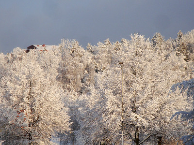 Snö i Tullinge