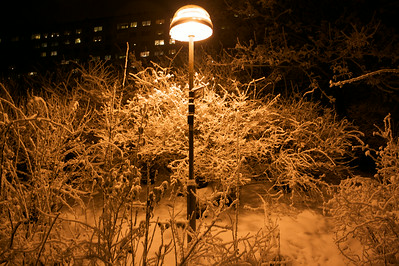 Warm glow of the winter night