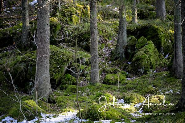 Karnaistenkorven retkeily- ja luontopolut Lohja