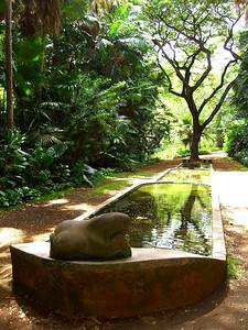 Stepped Fountain Allerton Gardens, Kauai