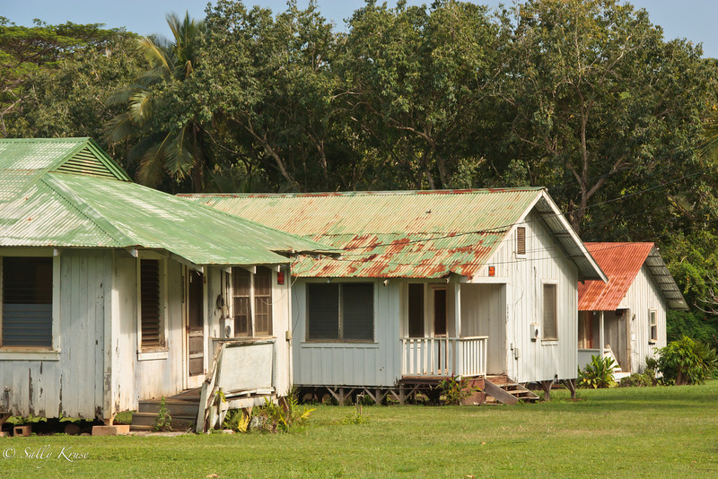 A collection of shanty homes near the north shore of Kauai, Hawaii.