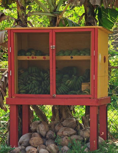 A colorful roadside fruit stand in Kilauea, Kauai, Hawaii