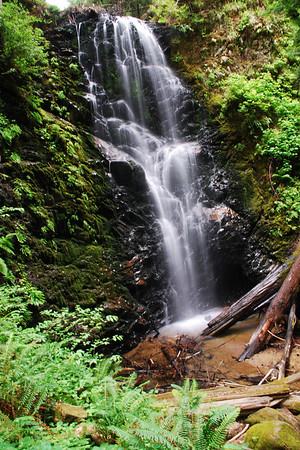 This is Berry Creek falls in Big Basin, California. It's taller than it looks in the photograph.