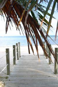 SM BeachesIMG_4972