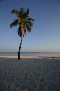 SM BeachesIMG_5590