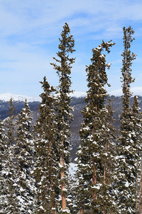 2011 02 12 Keystone CO 069
