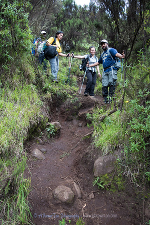 Kilimanjaro Day 2: Forest Camp to Shira Camp 1