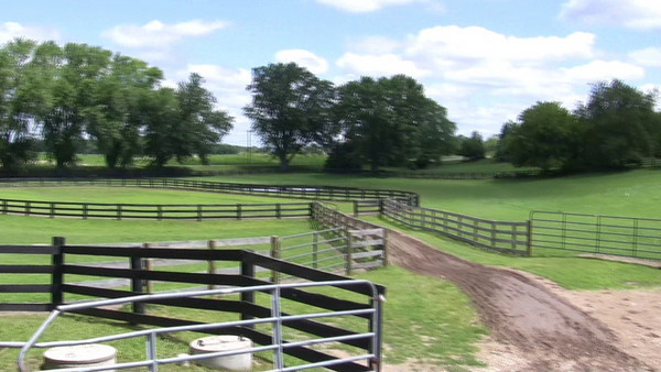 Short video of one of the outdoor riding arena at Knollwood Farm.