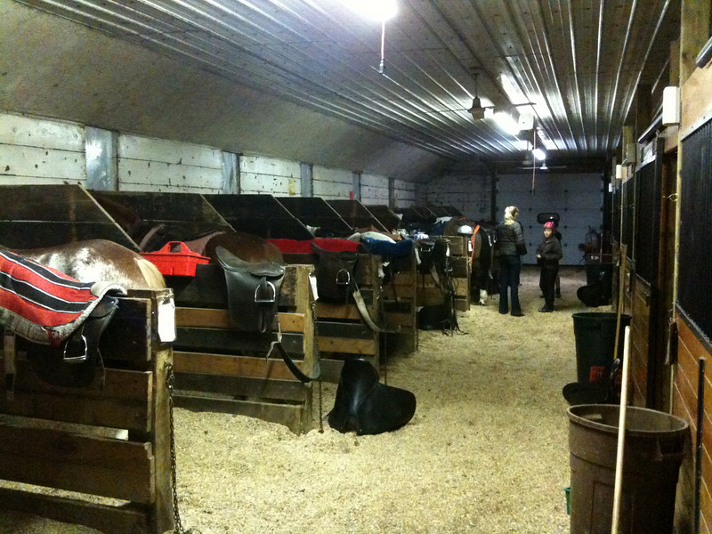 Open stalls for some of the school horses at Knollwood Farm.