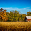 Photographed in Knox County, Ohio on October 19, 2016 by Joe Frazee.