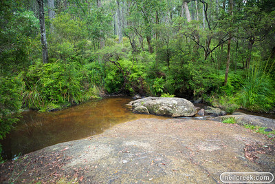 creek-131222-099