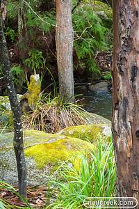 creek-131222-129