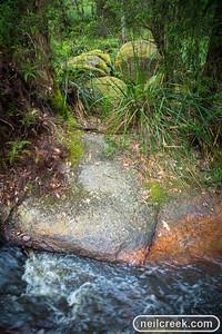creek-131222-118
