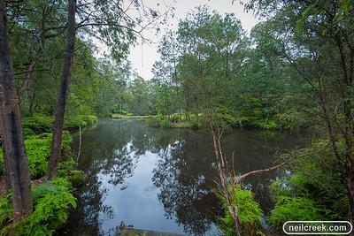 creek-131222-097