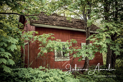 Kadonneen talon jäljelle jäänyt ulkorakennus
