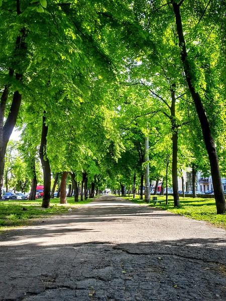 Spring in Kyiv