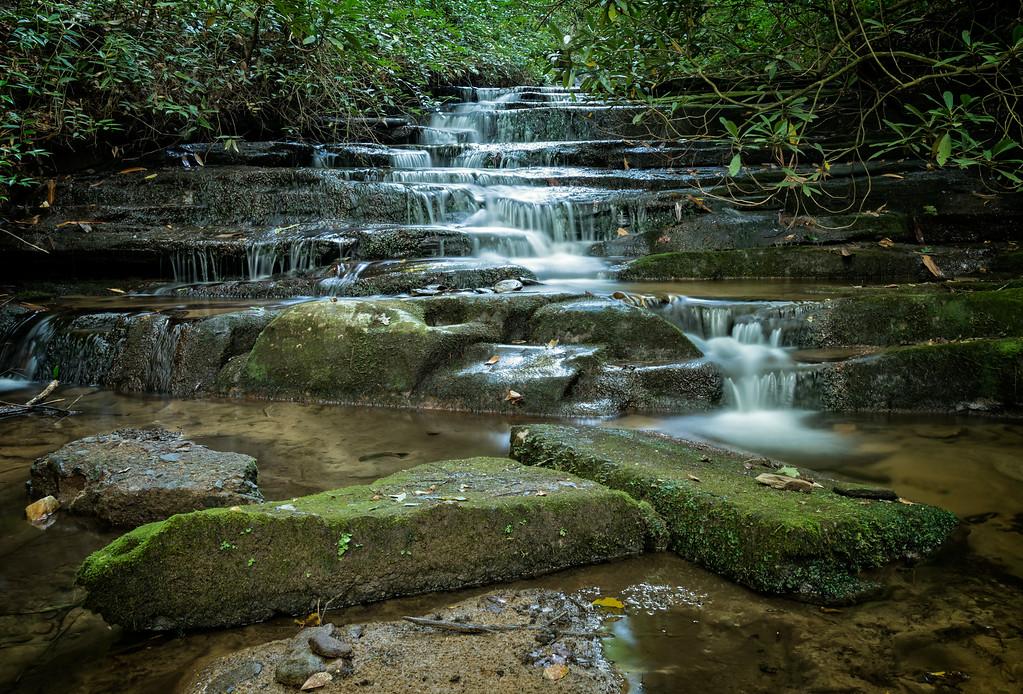 Along Angel Falls Trail