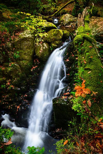 Falling stream