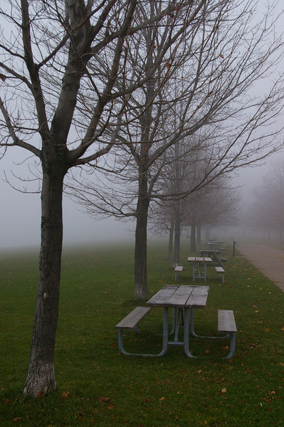 Lake Ontario foggy picnic tables. All's quiet :)