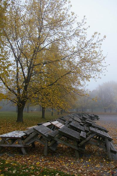 Lake Ontario wintering picnic tables.