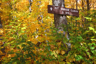 Mt. Sophie Sign