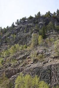 Mt. Josephine