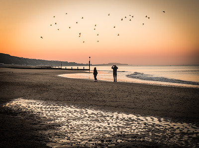 Boscombe Morning-1