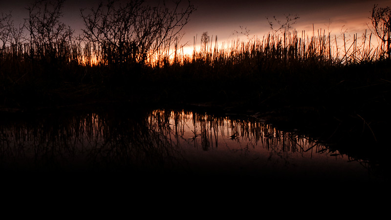 sunset pond dusk
