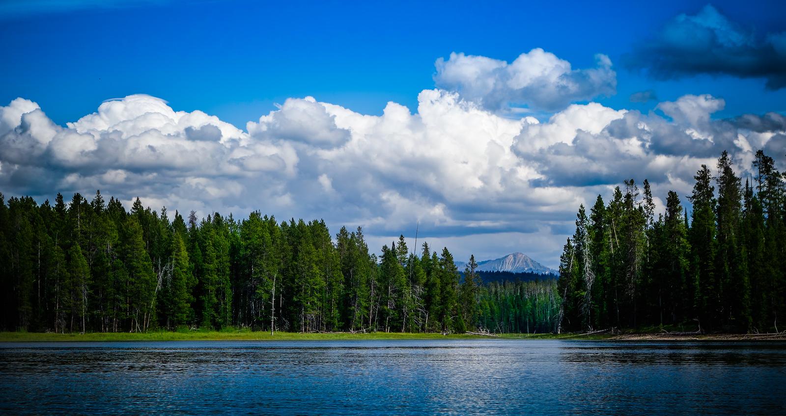 jackson lake
