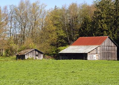 6179 - Badger Rd Barn 2 - 5x7