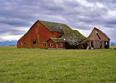 4857 5 - Abbott Rd Barn 2 - 5x7