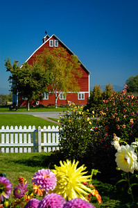 Red Barn In The Spring