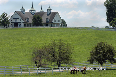 06.27.09 = Not a bad place to call home huh?  This is one of the many stables, yes, I said stables in Lexington, Kentucky.  They take their Horses seriously down there and treat them like royalty.  Well, let's face it, most of those horses will make more in their short career's than I ever will.