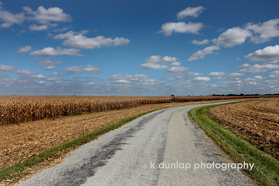 "10.08.09 = Nothin' but corn!  In my travels this week I took a back road for a few miles to d-stress and enjoy the amazing blue skies.  I turned down this little country road and found nothing but corn.  Corn as far as the eye could see and further than my lens could reach.  I stood up on my running board to get this shot. These are the colors here in the Midwest this time of year, golden fields and aqua blue skies!  I'm glad I got this shot the other day, it's raining here and plans to do so all weekend.  Have a great weekend!  ""Before the reward there must be labor. You plant before you harvest. You sow in tears before you reap joy.""  Ralph Ransome"