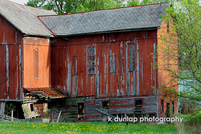 05.08.09 = We came across this great old barn up in Amish Ohio. I jumped out of the car and was standing in the road taking this shot.  I wish I had switched lens' to get more of this great old barn. Maybe another day.....