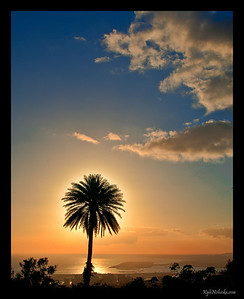 Pu'u Ualakaa Sunset