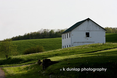 05.09.10 = This is another photo from my Amish Ohio venture.  I think with all the daily stress in our lives we sometimes just need to get away from it all; take a drive and take in the view.  Enjoy this peacefull view.  If you take a deep breath you can almost smell of fresh cut grass.