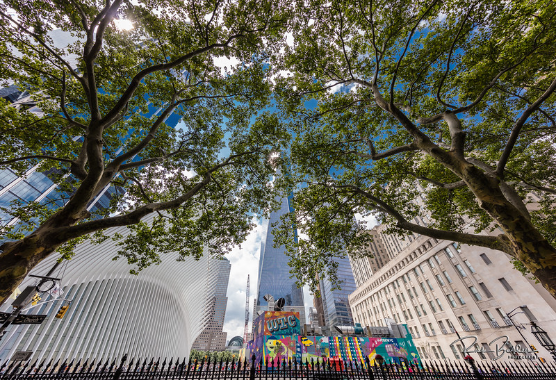 The trees frame this shot perfectly.   Here is a shot from the Chapel Cemetary by the World Trade Center.  .  Photos by:  @RickBeldenPhotography   .................