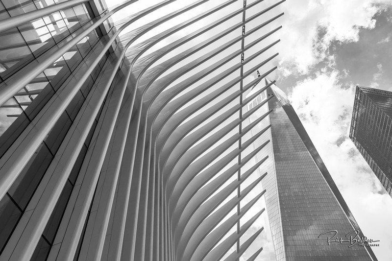 I love to photograph interesting Architecture as it brings me back to my roots where I started so many years ago.   Here is a shot from the new Subway Station by the World Trade Center.  .  Photos by:  @RickBeldenPhotography   .................