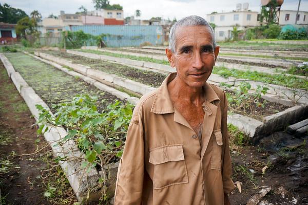 Ignacio, at small organopónico (urban farm) in Cienfuegos, Cuba