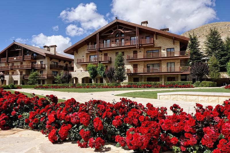 Summer Ski Lodge