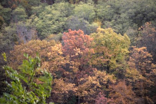 Letchworth State Park, NY,