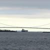 Its a very big suspension bridge.