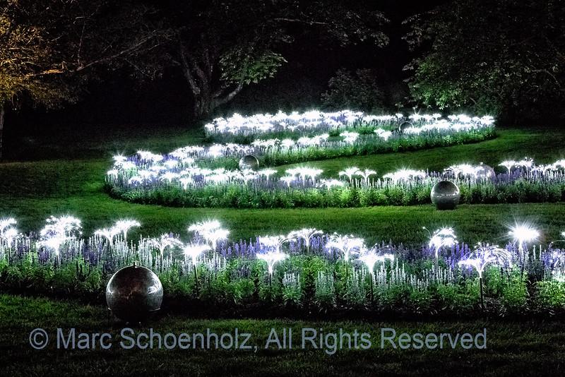 Serpentine Garden - Night Garden-design;  Photographed at:  Longwood Gardens,  Kennett Sq, PA,  June,  2012    © 2012 Marc Schoenholz  Camera:  Canon Canon EOS 5D Mark III Lens:  70 Shutter Speed:  5;  Aperture:  11 ISO Setting:  16000