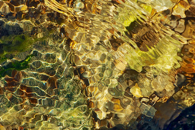 Water glistening over golden pebbles at Limantour Beach. ref: 38337d23-ab57-4b56-9acd-86cab929149f