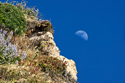 Moon over the Limantour Beach Sea Cliffs ref: 38337d23-ab57-4b56-9acd-86cab929149f