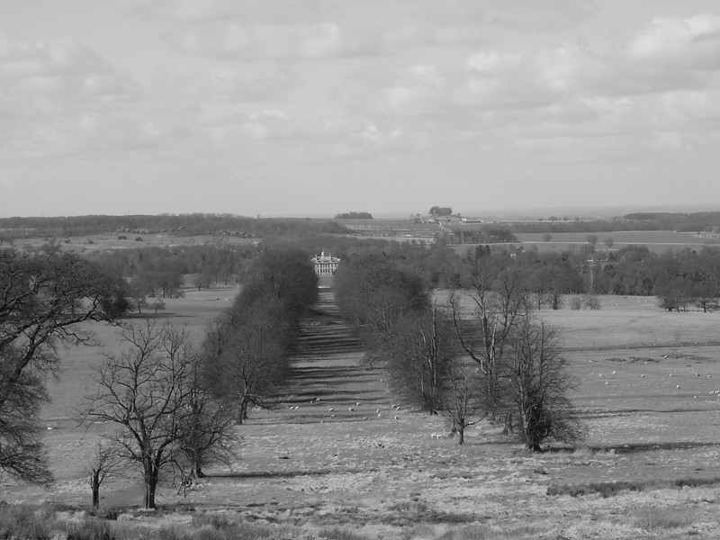 Looking down the hill to Belton House