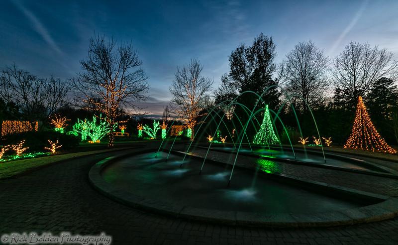 DSBG Christmas Lights-5410