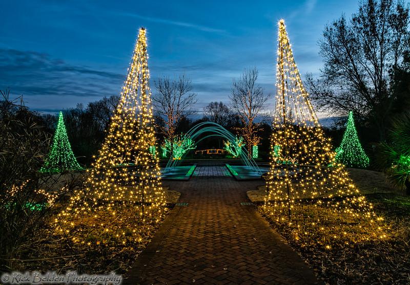 DSBG Christmas Lights-5408