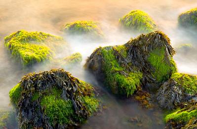 Misty rocks on the Gin Beach jetty, Montauk.